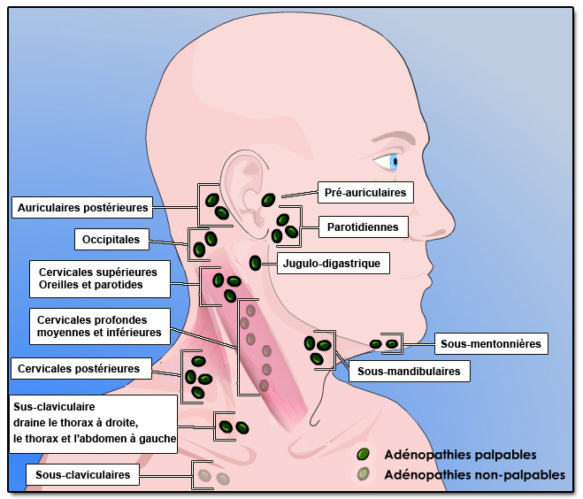 douleur au niveau des ganglions du cou